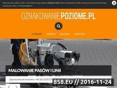 Miniaturka Oznakowanie poziome hal, magazynów oraz parkingów (oznakowaniepoziome.pl)
