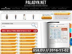 Miniaturka domeny paladyn.net