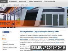Miniaturka domeny www.pawilonyefekt.pl