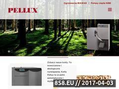 Miniaturka domeny pellux.pl