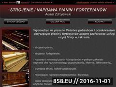Miniaturka domeny www.pianinaifortepiany.pl