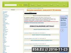 Miniaturka www.pierwszyportal.pl (Baza wiedzy i informacji)