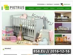 Miniaturka domeny www.pietrus.pl
