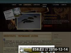 Miniaturka domeny www.pijawki-nowysacz.pl