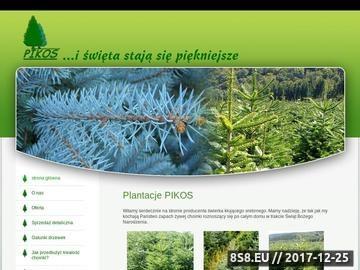Zrzut strony Pikos - plantacje choinek