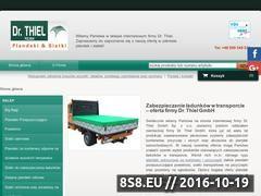 Miniaturka domeny www.pl.dr-thiel.net