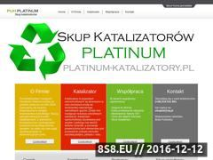 Miniaturka domeny platinum-katalizatory.pl