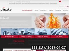 Miniaturka domeny www.pliszka.pl