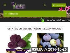 Miniaturka domeny plumeria.sklep.pl