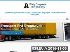 Miniaturka domeny www.plyty-drogowe.com