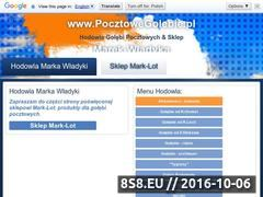 Miniaturka domeny www.pocztowegolebie.pl