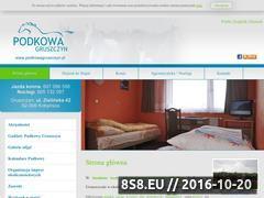 Miniaturka domeny www.podkowagruszczyn.pl