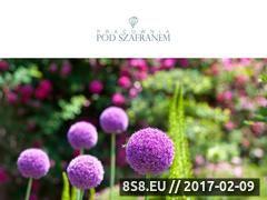Miniaturka domeny www.podszafranem.pl