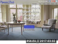 Miniaturka pogromca-brudu.pl (Pranie tapicerki meblowej, dywanów i wykładzin)