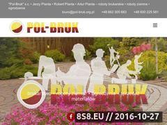 Miniaturka domeny pol-bruk.org.pl