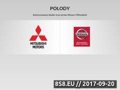 Miniaturka domeny www.polody.pl