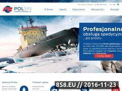 Miniaturka domeny www.polsin.com.pl