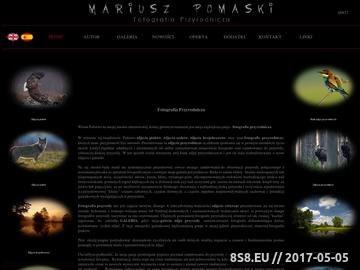 Zrzut strony Fotografia Przyrodnicza - Mariusz Pomaski