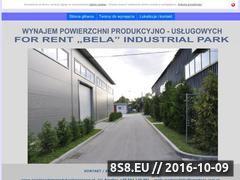 Miniaturka domeny powierzchnieprodukcyjnegorzow.pl