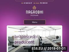 Miniaturka domeny poznannagrobki.pl