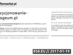 Miniaturka domeny www.pozycjonowanie-apogeum.pl