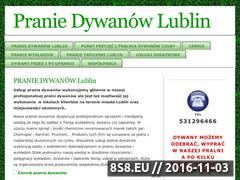 Miniaturka domeny www.pranie-dywanow-lublin.pl