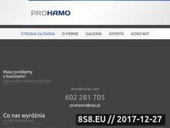 Miniaturka prohamo.pl (Usługi kominiarskie)