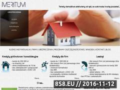Miniaturka domeny promeritum.com.pl