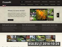 Miniaturka domeny www.promulti.pl