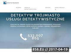 Miniaturka domeny prywatny-detektyw-24.pl