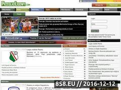 Miniaturka domeny przegladligowy.com