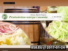 Miniaturka domeny www.przetworstwowarzywowocow.pl