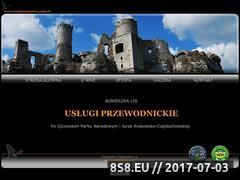 Miniaturka domeny www.przewodnikpojurze.pl