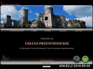 Zrzut strony Szlak Orlich Gniazd - wycieczki z przewodnikiem