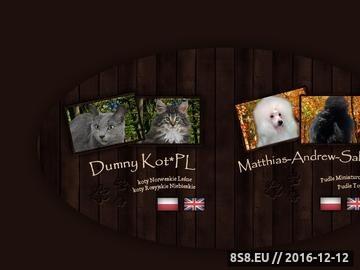 Zrzut strony Dumny Kot*PL, hodowla kotów Norweskich Leśnych i Rosyjskich Niebieskich
