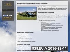 Miniaturka domeny www.pzlkalisz.pl