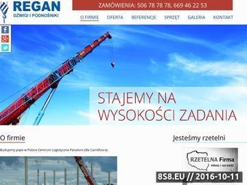 Zrzut strony Dźwigi Toruń, dźwigi Bydgoszcz oraz wynajem żurawi