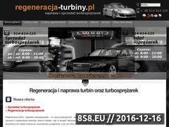 Miniaturka domeny www.regeneracja-turbiny.pl
