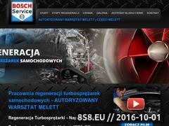 Miniaturka domeny regeneracja-turbosprezarek.pl