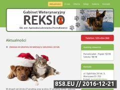 Miniaturka domeny reksio-wet.pl