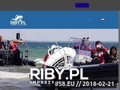 Miniaturka riby.pl (Wycieczka po zatoce Gdańskiej)