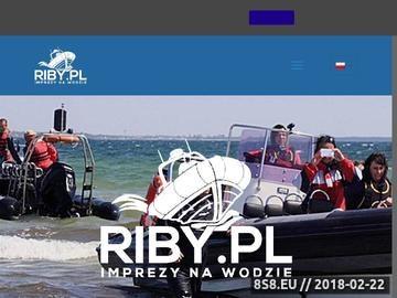 Zrzut strony Wycieczka po Zatoce Gdańskiej