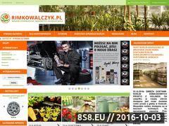 Miniaturka domeny www.rimkowalczyk.pl