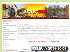 Miniaturka domeny rolbis.pl