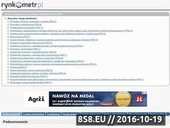 Miniaturka domeny www.rynkometr.pl