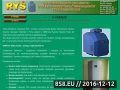 Miniaturka domeny www.rys.bizn.pl