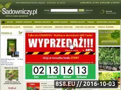 Miniaturka domeny www.sadowniczy.pl