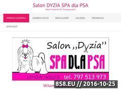 Miniaturka domeny www.salondyzia.pl