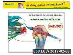 Miniaturka domeny sandi-art.pl.tl
