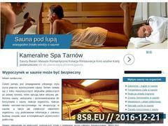 Miniaturka domeny sauna.edu.pl